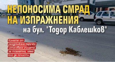 """Непоносима смрад на изпражнения на бул. """"Тодор Каблешков"""""""