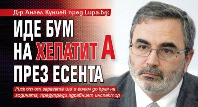 Д-р Ангел Кунчев пред Lupa.bg: Иде бум на хепатит А през есента