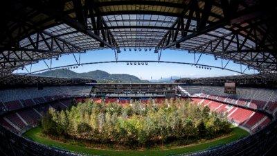 Арт инсталация превръща австрийски стадион в гора