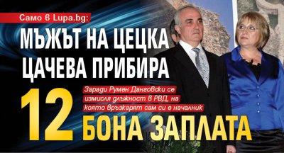 Само в Lupa.bg: Мъжът на Цецка Цачева прибира 12 бона заплата