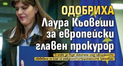 Одобриха Лаура Кьовеши за европейски главен прокурор