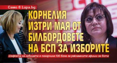 Само в Lupa.bg: Корнелия изтри Мая от билбордовете на БСП за изборите