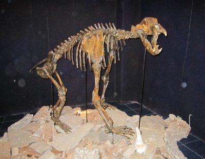 Уникален музей на пещерите пак отвори врати в Чепеларе