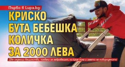 Първо в Lupa.bg: Криско бута бебешка количка за 2000 лева