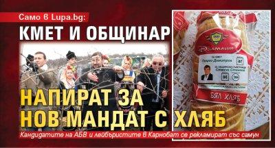 Само в Lupa.bg: Кмет и общинар напират за нов мандат с хляб