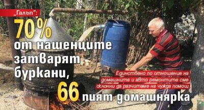 """""""Галъп"""": 70% от нашенците затварят буркани, 66 пият домашнярка"""
