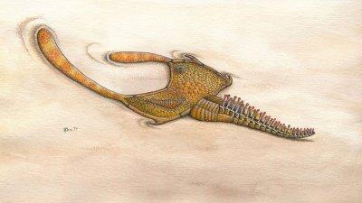 Палеонтолози откриха фосили на членостосноги на 480 млн. години
