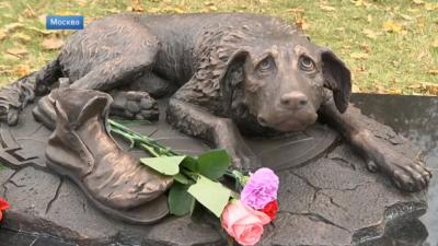 Издигнаха паметник на бездомните животни в Москва (ВИДЕО)