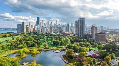 Градските хора живеят по-дълго в близост до дървета