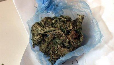 Хванаха плевенчанин с наркотици в гащите