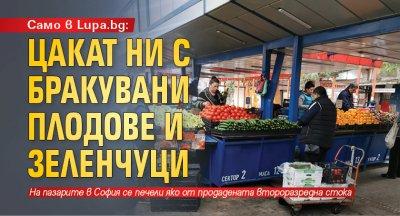 Само в Lupa.bg: Цакат ни с бракувани плодове и зеленчуци