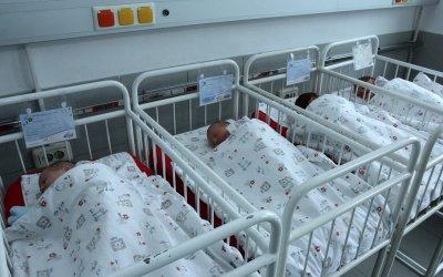 """5% от новородените в """"Шейново"""" са недоносени"""