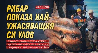 Рибар показа най-ужасяващия си улов (ГАЛЕРИЯ)