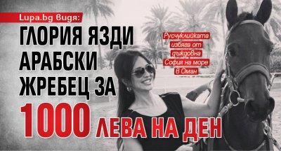 Lupa.bg видя: Глория язди арабски жребец за 1000 лева на ден