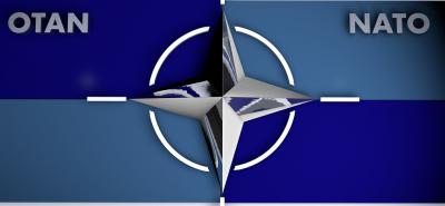 """В """"мозъчна смърт"""" на 70 години? НАТО се готви да потърси помощ от """"учените глави"""""""
