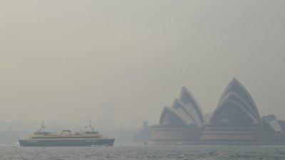 Гъст смог затисна Сидни