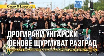 Само в Lupa.bg: Дрогирани унгарски фенове щурмуват Разград