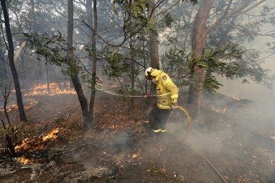 Пожарът край Сидни може да бушува седмици, преди да бъде потушен