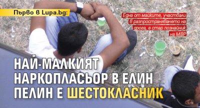 Първо в Lupa.bg: Най-малкият наркопласьор в Елин Пелин е шестокласник