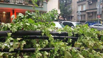 Бурята остави без ток част от Врачанско