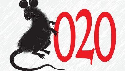Годината на Плъха - кои са забранените ястия?