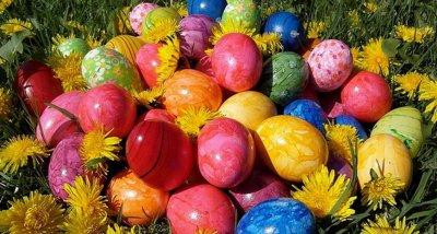 Колко опасна е боята за яйца?