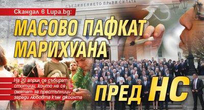 Скандал в Lupa.bg: Масово пафкат марихуана пред НС