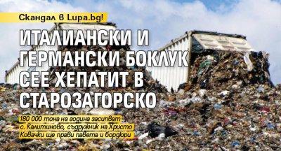 Скандал в Lupa.bg! Италиански и германски боклук сее хепатит в Старозагорско