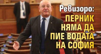 Ревизоро: Перник няма да пие водата на София