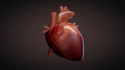 Кои са смъртните врагове на сърцето?
