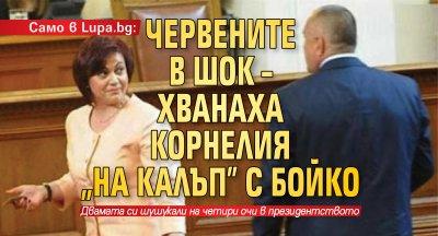 """Само в Lupa.bg: Червените в шок – хванаха Корнелия """"на калъп"""" с Бойко"""