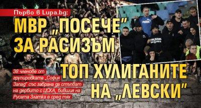 """Първо в Lupa.bg: МВР """"посече"""" за расизъм топ хулиганите на """"Левски"""""""