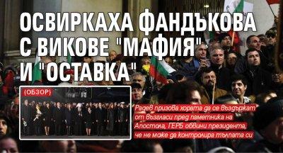 """Освиркаха Фандъкова с викове """"Мафия"""" и """"Оставка"""" (ОБЗОР)"""