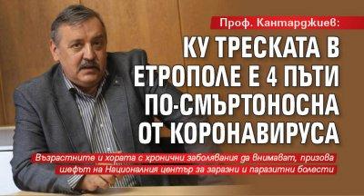 Проф. Кантарджиев: Ку треската в Етрополе е 4 пъти по-смъртоносна от коронавируса