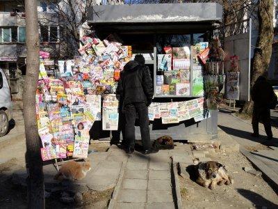 Държавата ще финансира разпространението на вестници