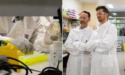 Учени в Австралия с важна стъпка към лечение и ваксина