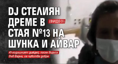 DJ Стелиян дреме в стая №13 на шунка и айвар (ВИДЕО)