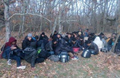26 бежанци спипаха в с. Янтра