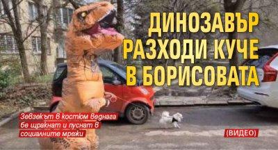Динозавър разходи куче в Борисовата (ВИДЕО)