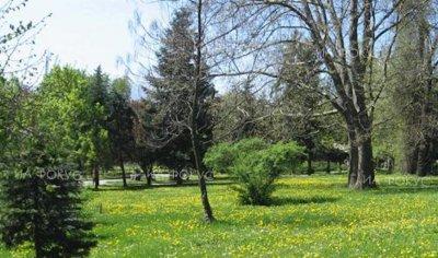 От утре в София пръскат срещу комари и кърлежи