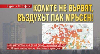 Куриоз в София: Колите не вървят, въздухът пак мръсен!