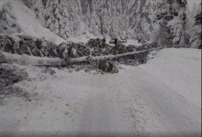 80 см сняг затрупа Рудозем, регионът бедства