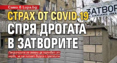 Само в Lupa.bg: Страх от COVID-19 спря дрогата в затворите
