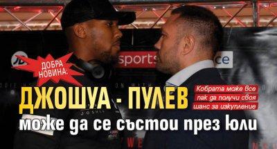 Добра новина: Джошуа - Пулев може да се състои през юли