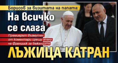 Борисов за визитата на папата: На всичко се слага лъжица катран