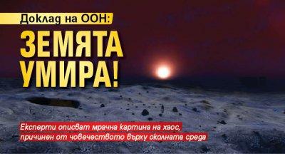 Доклад на ООН: Земята умира!