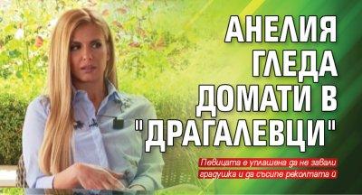 """Анелия гледа домати в """"Драгалевци"""""""