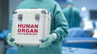 След години чакане: Разрешиха кръстосаното донорство