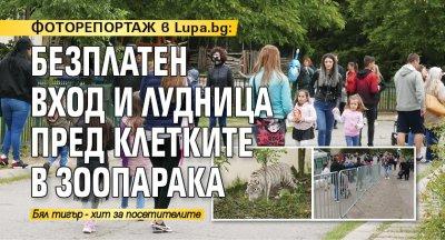 ФОТОРЕПОРТАЖ в Lupa.bg: Безплатен вход и лудница пред клетките в зоопарака