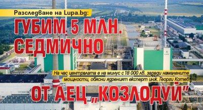 """Разследване на Lupa.bg: Губим 5 млн. седмично от АЕЦ """"Козлодуй"""""""